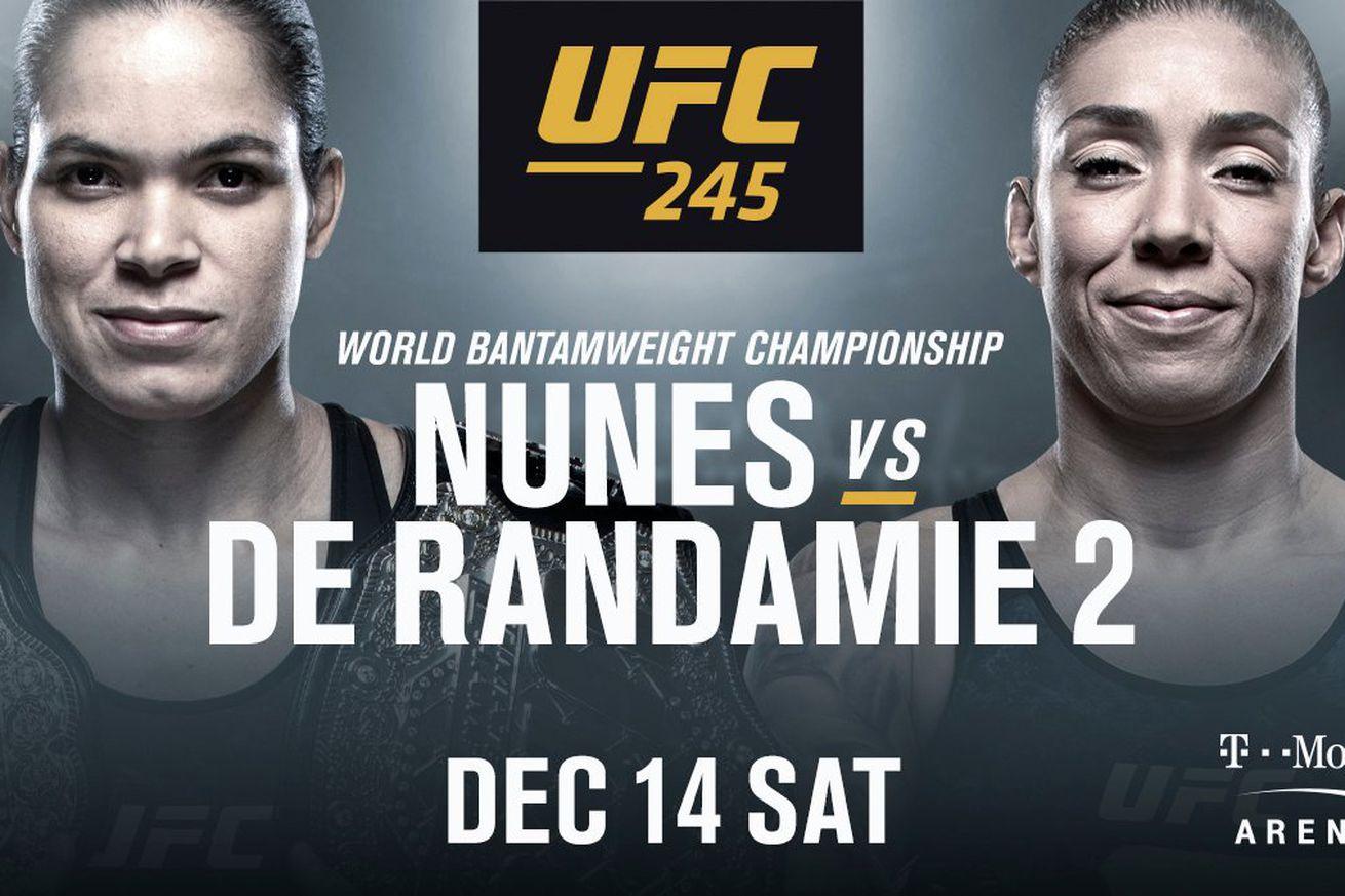 UFC 245: Las Vegas