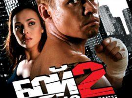 Бой с тенью 2: Реванш 2007