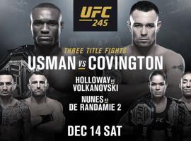 Полный кард UFC 245