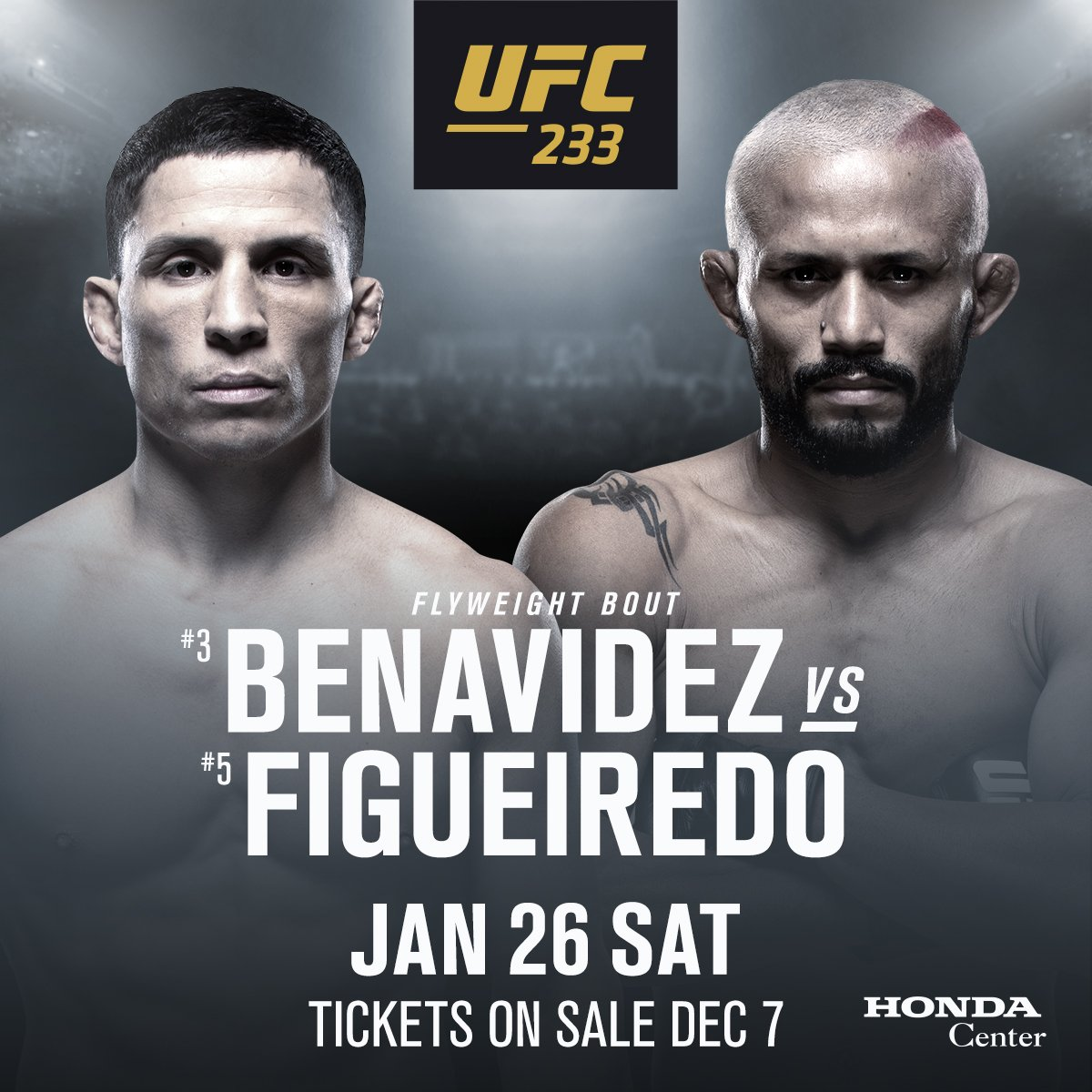 UFC Fight Night: Норфолк