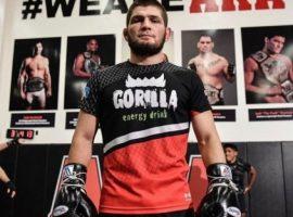 Президент федерации бокса России: Хабиб и Конор должны подраться по правилам бокса