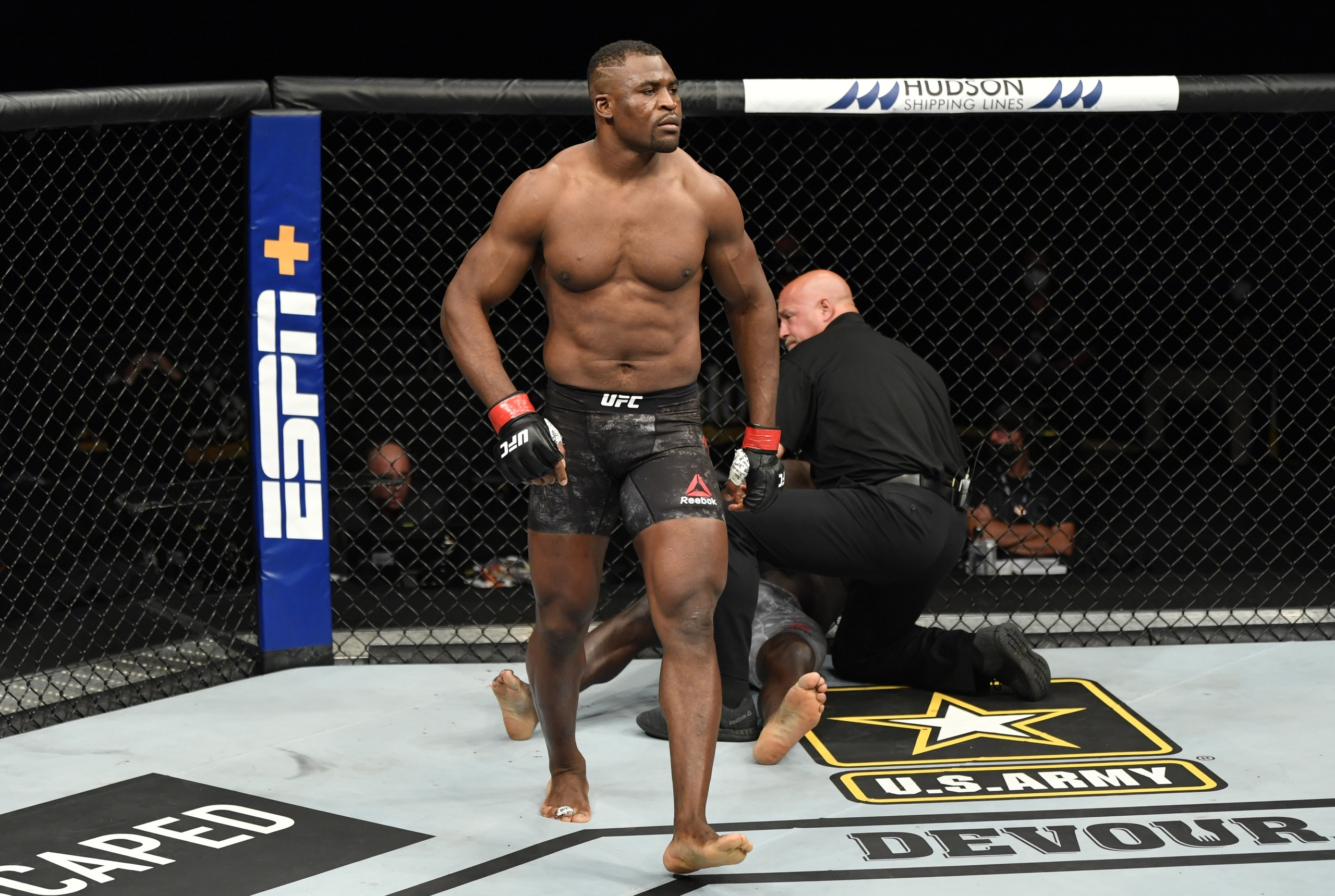 MMA news: Francis Ngannou was brutally hit in the body by an action sports athlete Ryan Williams. Video.
