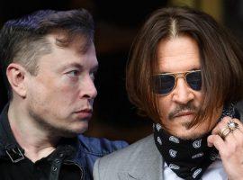 Джонни Депп и Илон Маск могут провести бой по правилам ММА