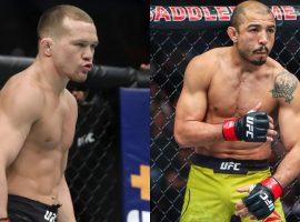 Прогнозы бойцов UFC на титульный бой Пётр Ян – Жозе Альдо (UFC 251)