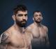 Элизеу Залески дос Сантос — Муслим Салихов: прогнозы и ставки на бой UFC 251