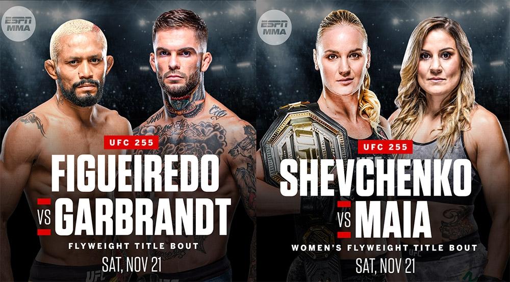 UFC 255: Фигередо - Гарбрэндт