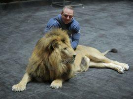 Братья Запашные предложили Хабибу потренироваться с их львом