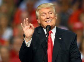 Дональд Трамп будет смотреть бои Колби Ковингтона и Джастина Гетжи