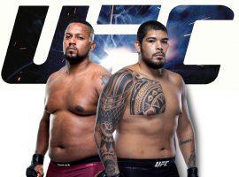 Йорган Де Кастро — Карлос Фелипе: прогноз и ставка на бой UFC Fight Night: Холм vs Алдана