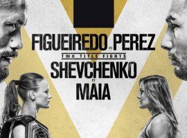 Полный файткард турнира UFC 255: Дейвисон Фигейреду vs. Алекс Перес, Валентина Шевченко vs. Дженнифер Майя