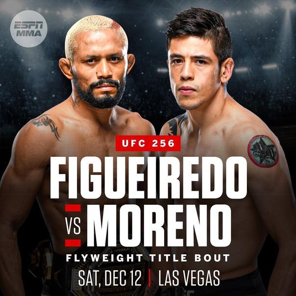 UFC 256: Фигередо - Морено