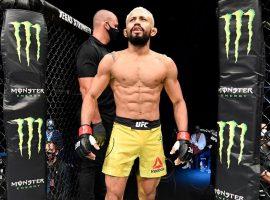 Финальное промо к UFC 255: Фигередо vs Перес