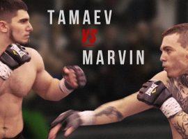 Асхаб Тамаев — Филипп Марвин прогноз и ставка на бой