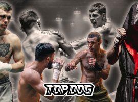 Новый турнир TopDog: TDFC 6