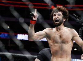 Боец MMA Магомедшарипов выйдет в октагон в ближайшие три месяца