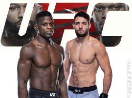 Фил Хоус — Нассурдин Имавов: прогноз и ставка на бой  UFC Fight Night 185: Blaydes vs. Lewis