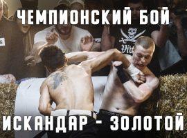 Top Dog: разбор апелляции чемпионского боя - Искандар vs Золотой