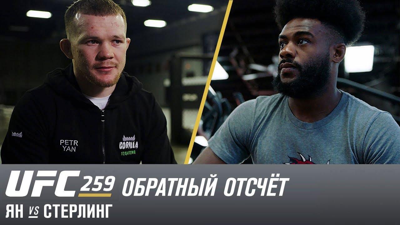 Петр Ян vs Алджамейн Стерлинг
