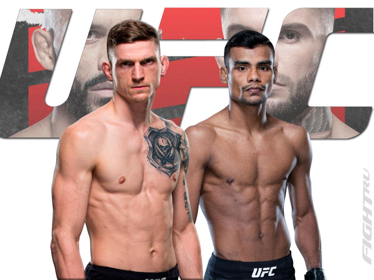 Давид Дворжак — Раулиан Пайва прогноз и ставка на бой UFC Fight Night