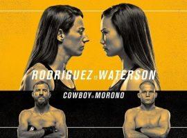 Хайлайты турнира UFC Fight Night: Родригес vs. Уотерсон. Видео