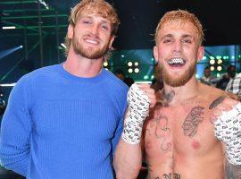 Bellator может подписать контракт с братьями Пол