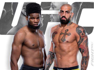 Кеннеди Нзечакву — Данило Маркес прогноз и ставка на бой UFC Fight Night 190 Ган - Волков